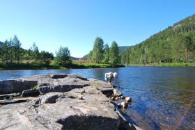 Norwegen Juli 15 (397)
